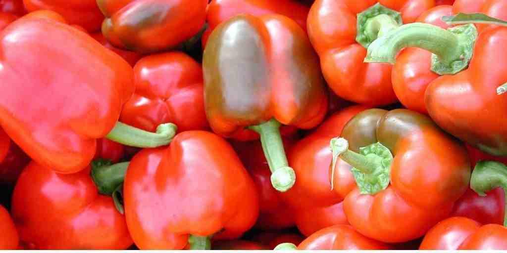 Gezonde snacks paprika